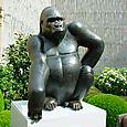 013 Fouquet's Gorille des montagnes