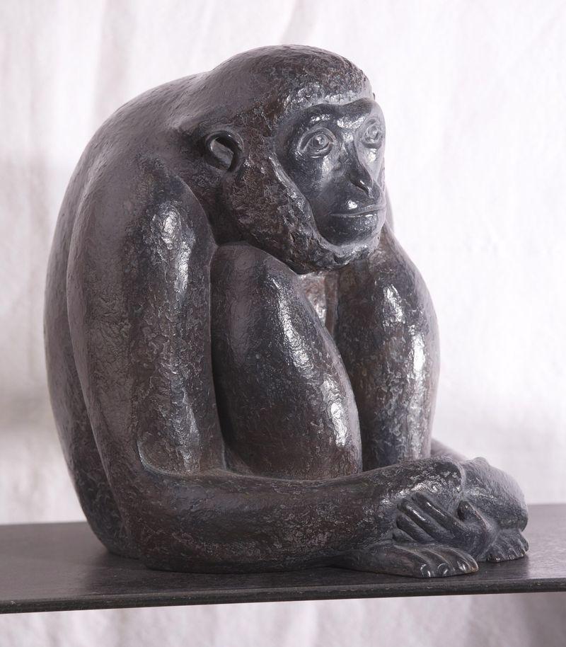 Petit Gibbon profil