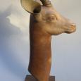 0088 Gazelle de Dama