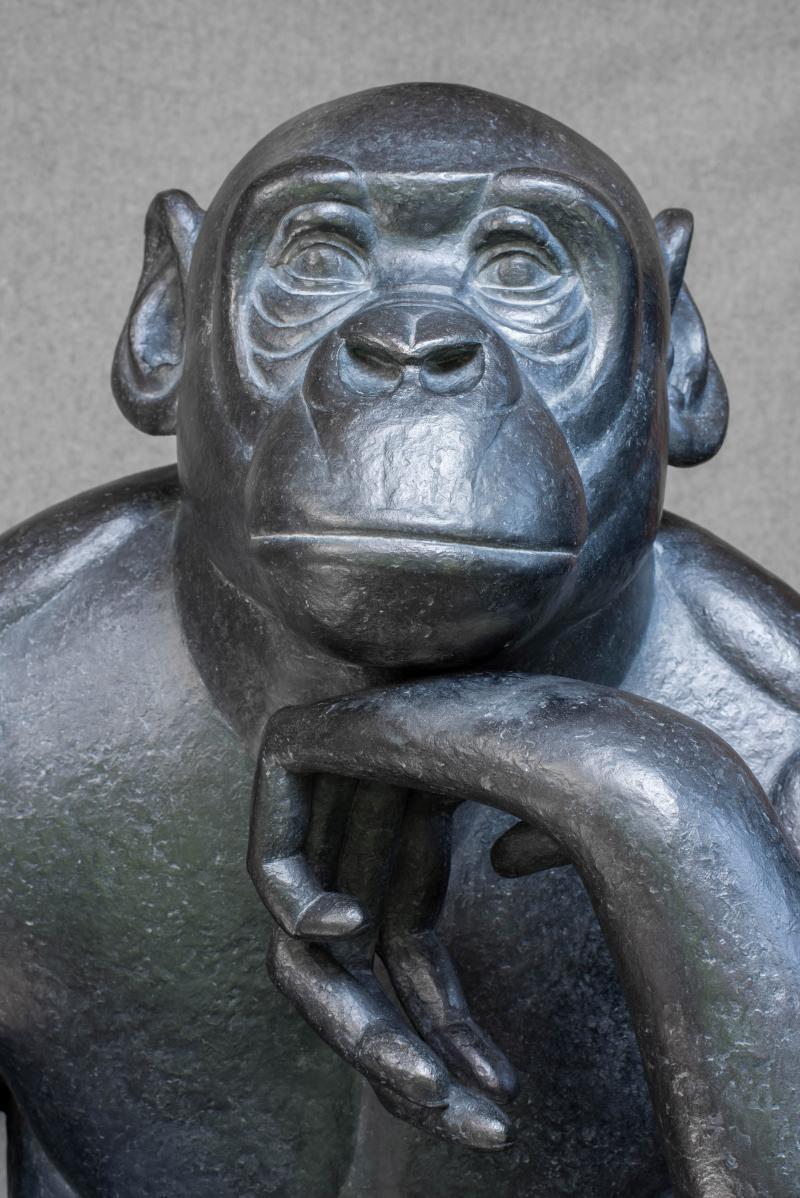Bonobo22