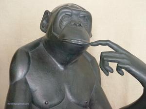 Bonobo_dtail_3