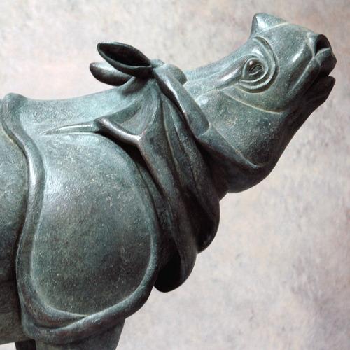Rhino_profil_close_up_carr_3