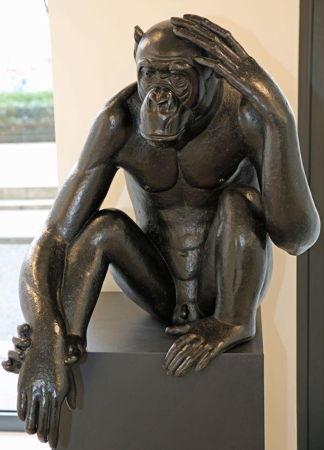 008 Bonobo Kanzi