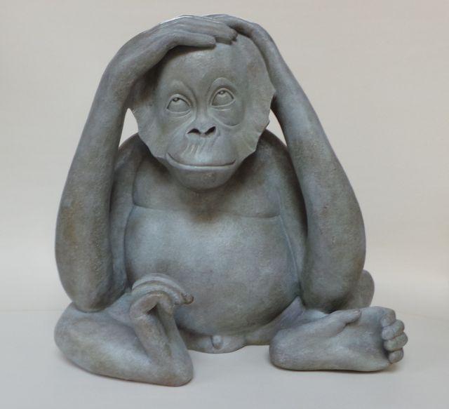 014 Orang outan Consterné