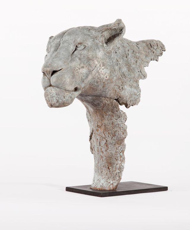 00113 Fragment de Lionne