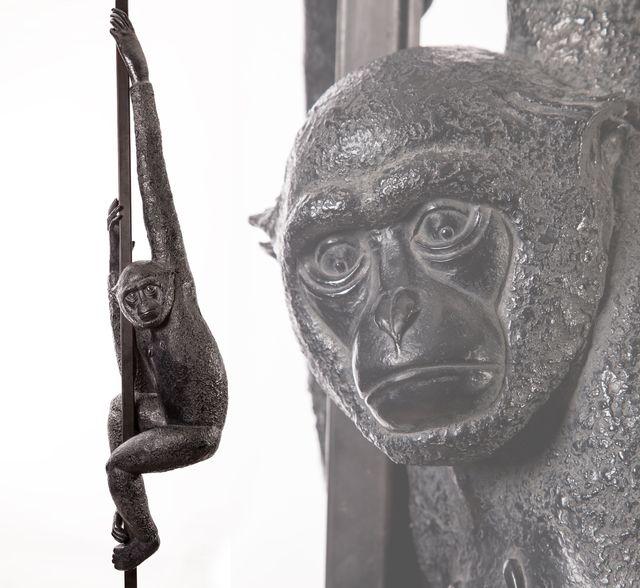 002 Gibbon Suspendu