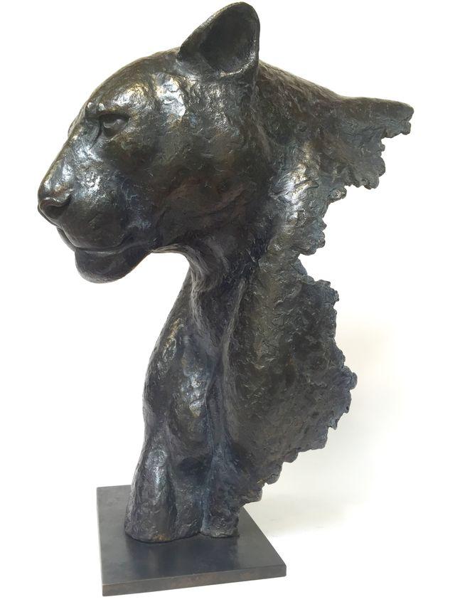 00115 Fragment de Panthère Noire
