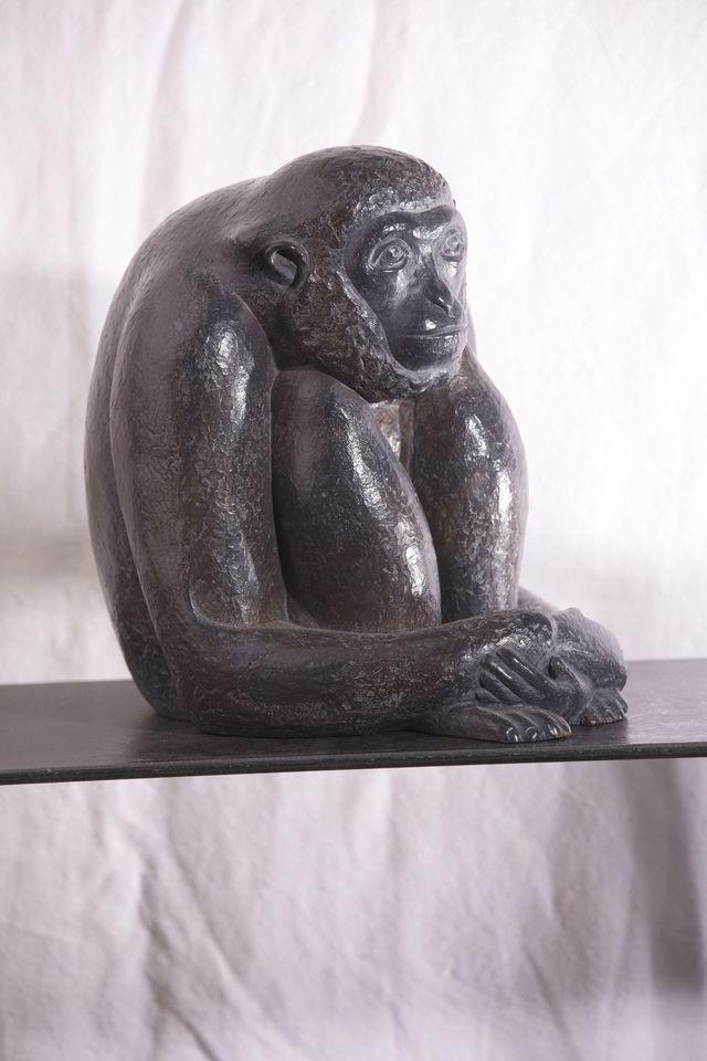 00202 Petit Gibbon profil