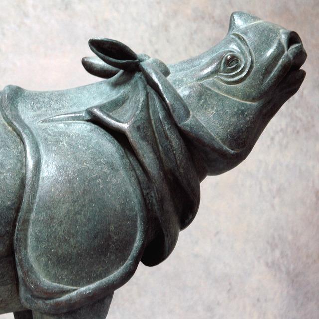 0231 Rhinocéros indien (détail)