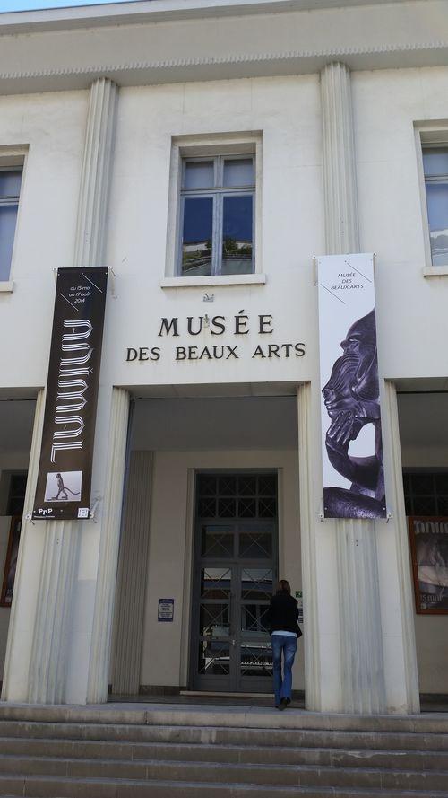 004 affichage sur le musée des beaux arts