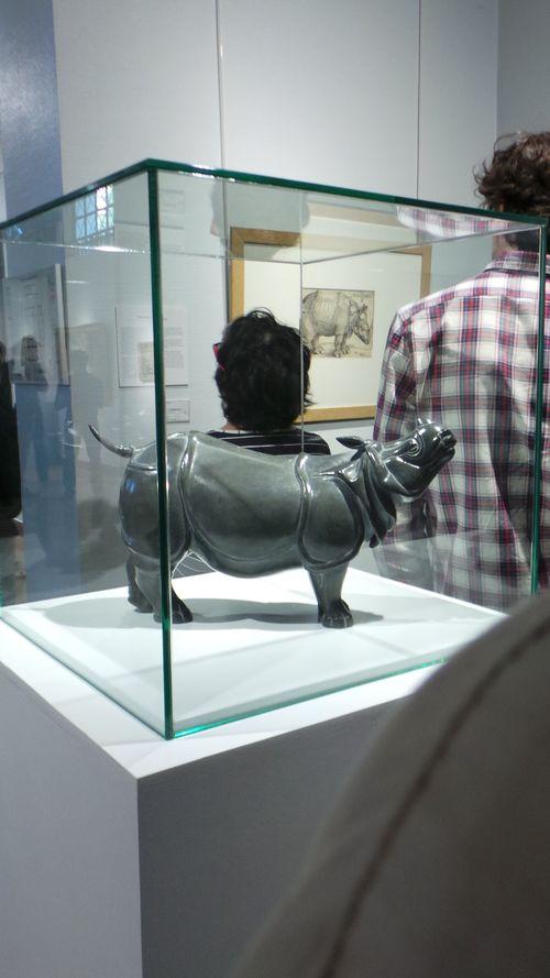 010 Rhinocéros indien