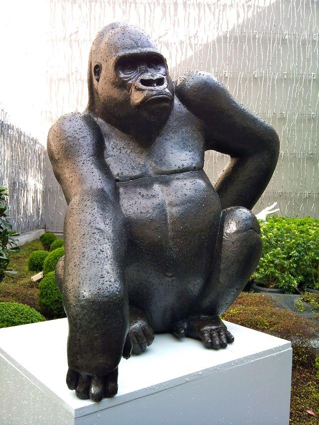 016 Fouquet's Gorille des montagnes