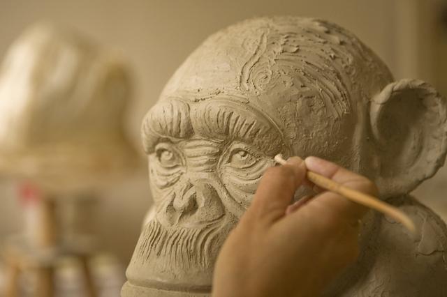 Chimpanzé Portrait